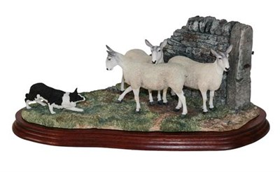 Lot 26 - *  Border Fine Arts 'Stand Off' (Border Collie and Sheep), model No. B0701 by Ray Ayres,...