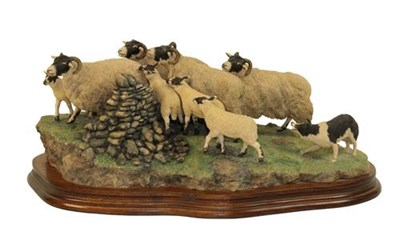 Lot 52 - Border Fine Arts 'Gathering the Strays' (Sheep and Collie), model No. JH28 Ray Ayres, limited...