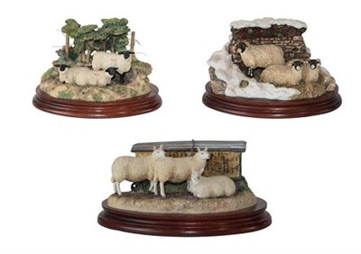 Lot 79 - Border Fine Arts 'Summer Shade' (Three Sheep), model No. B0340, limited edition 571/1500;...