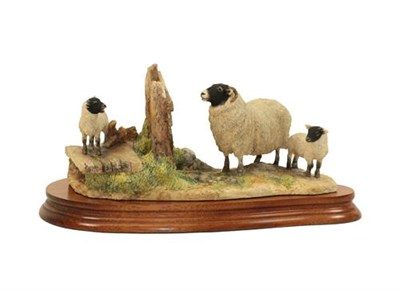 Lot 94 - Border Fine Arts 'Wrong Side of the Fence' (Ewe and Lamb), model No. JH100 by Anne Wall,...