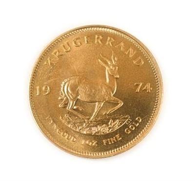 Lot 2010 - South Africa, 1974 Krugerrand. 1 oz. 24ct (.999). Obv: Bust of Paul Kruger left. Rev: Springbok, 19